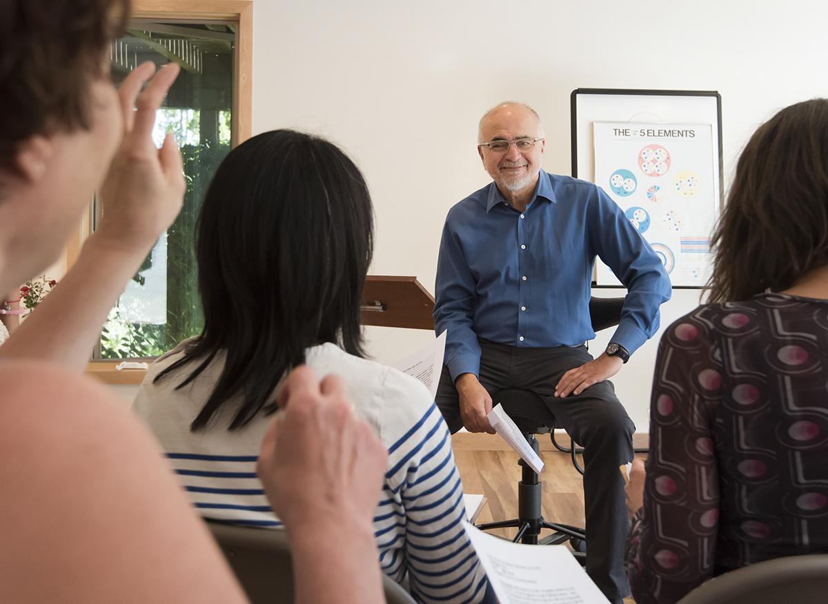 Five Element Acupuncture Training Program